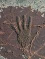 Picture of Jeffers Petroglyph